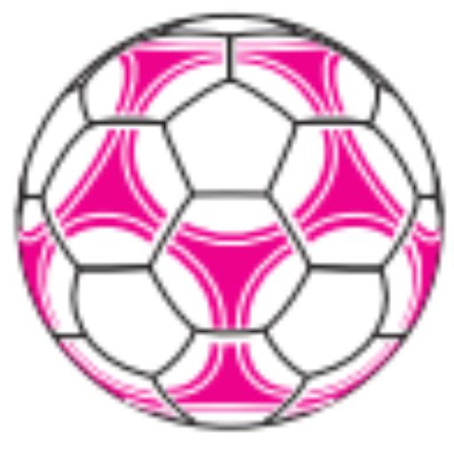 Gaceta Cartagonova - FC Cartagena