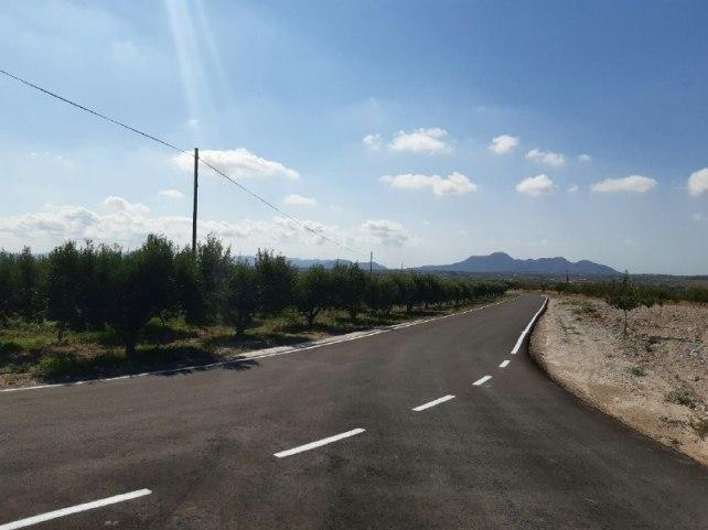 Camino Los Cañavates 3