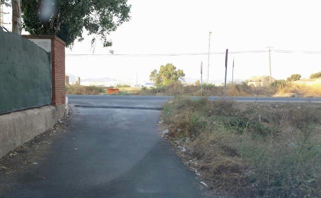 Deficiencias La Palma 3 1